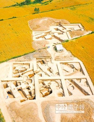 陜現5800年前 北方水稻栽培證據