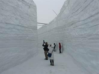 立山黑部大雪谷散步開通首日 遇風雨喊停
