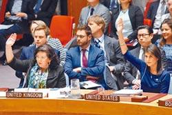 俄提譴責案 安理會否決