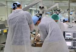 陽明大學自美進口14顆人體頭顱  精進外科醫師顱底手術