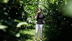 專訪》「失業部長」龍應台重返原鄉:我的快樂指數超高