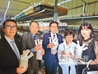 瓜國大使訪開陽光電農棚