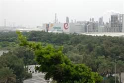 六輕植樹146萬株 防塵減碳有一套