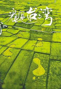 看見台灣啟發 陸紀錄片春天來了