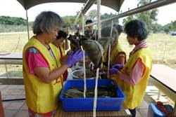 慰勞辛勤清潔隊員  台南市勞動節前夕包粽送祝福