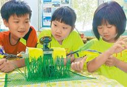 守護稻穀 學童自製機器稻草人