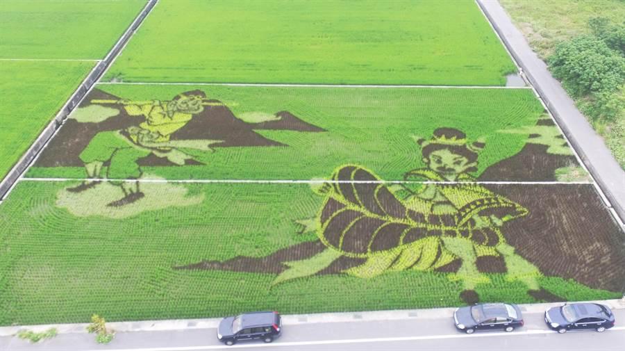 今年稻田彩繪主題孫悟空大戰鐵扇公主已呈現圖形。(鄭永宗提供、陳慶居翻攝)