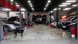 「汽車美容店」掩護販賣槍彈 警搜出衝鋒槍百餘發子彈