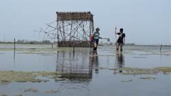 成龍溼地藝術節 5國藝術家用創作關心生態環境