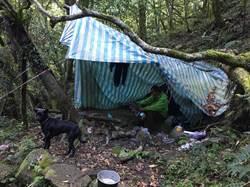 一包花生撐七天 男子與狗獨行登山迷路脫困