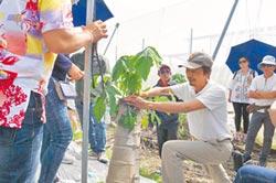 泰國農民團體 埔里取經