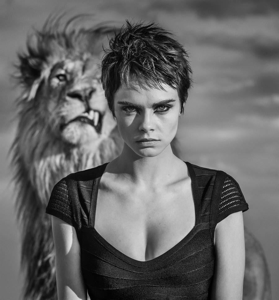 泰雅豪雅的形象廣告『#DontCrackUnderPressure』,名模卡拉與雄獅入鏡。(TAG Heuer提供)