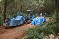 金龍山闢森林生態步道 營造溪頭FU