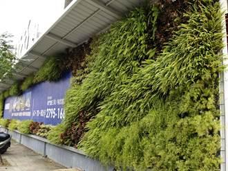 台南推動城市新美學 建築工程圍籬也追求綠美化