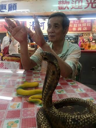 華西街蛇郎把戲多 曾有紅毛猩猩玩蛇