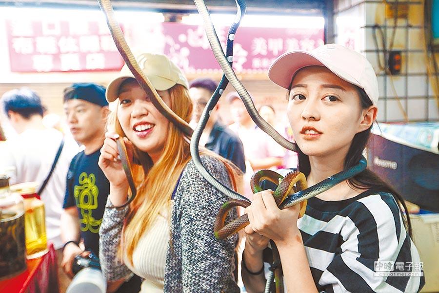 亞洲毒蛇研究所21日熄燈,第三代公主在場把玩假蛇。(鄧博仁攝)
