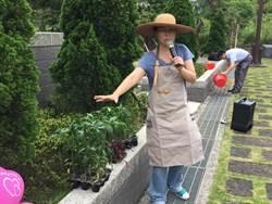 新北公私家菜計畫 打造食物後花園