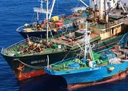 巨洋案被告涉人口販運 環團揭血汗海鮮真相