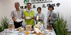 耐熱品種登場 明夏可吃到國產白蘿蔔