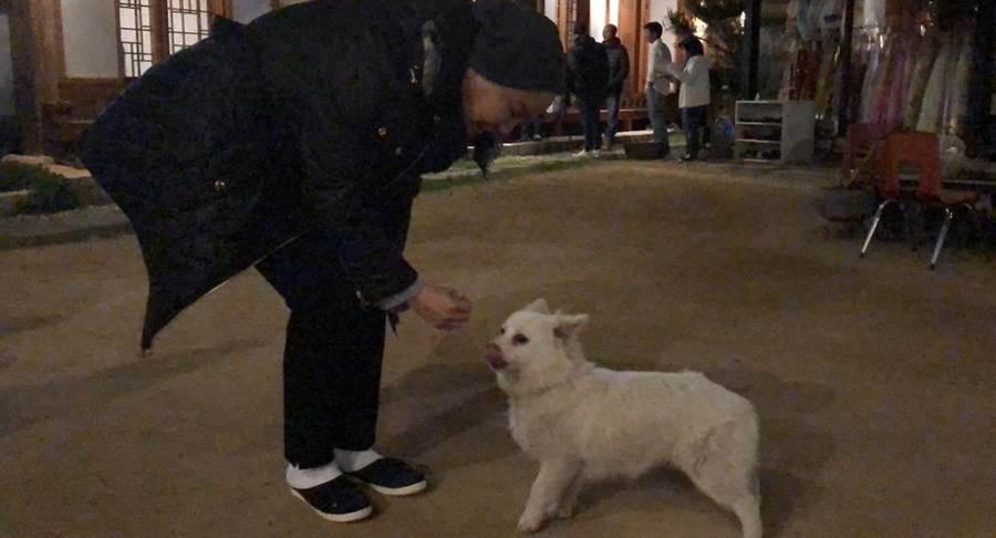唐美雲餵狗狗。(民視提供)