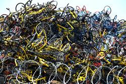 落跑了? 北京上海半數以上共享單車公司失聯