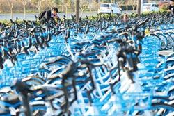 加碼共享單車事業 阿里投資哈羅單車19億人民幣