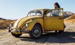 《大黃蜂》自己選主人 挑中海莉史坦菲德