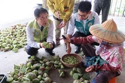台南白河蓮子量產量少三成! 市售假白河蓮子增