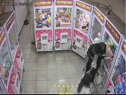 小情侶娃娃機店內激戰 男被「抓鳥」後突然彎腰