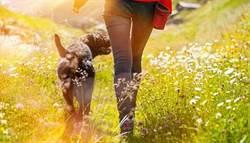 身體不老「髖關節」決定! 你走路走對了嗎?