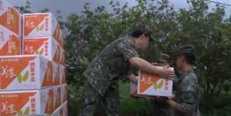 國軍救果農!採購4千公斤香蕉.木瓜 為弟兄加菜