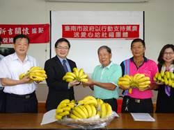 台南市政府支持蕉農 代理市長李孟諺:香蕉9成內銷無關兩岸關係