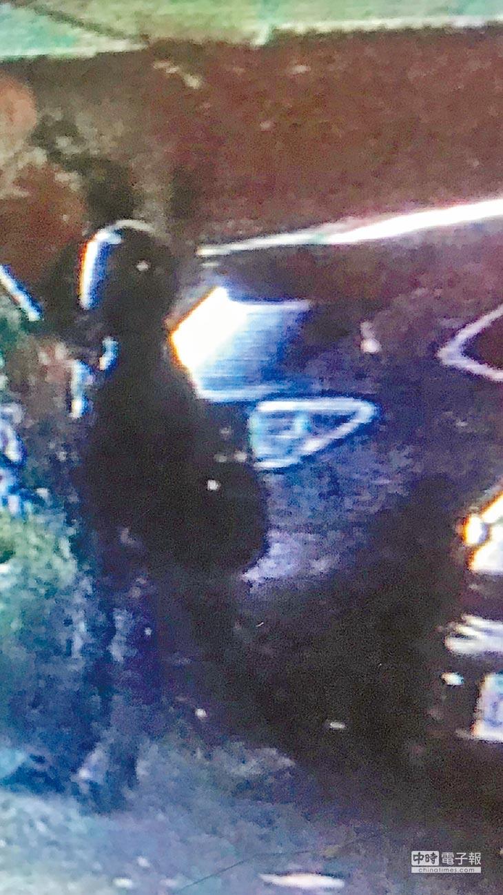 麥寮鄉前晚(15日)發生行刑式殺人案,警方調閱商家監視影像,發現凶嫌在現場等候超過1小時以上。(張朝欣翻攝)