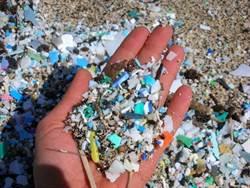 海洋汙染嚴重 日本的貝殼都有塑膠微粒