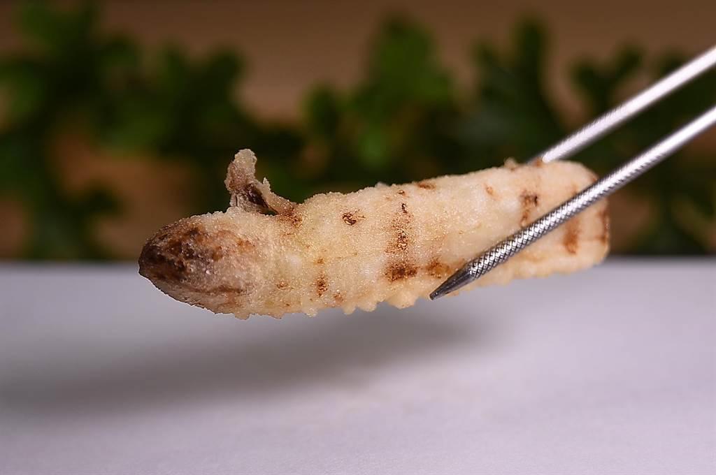 〈炸白蘆筍〉是以歐洲進口白蘆筍裹上極薄麵衣後輕炸,完整保留了白蘆筍與生俱來的甜度與汁液。(攝影/姚舜)