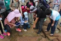 金大探索生態史蹟活動  帶領學員擁抱海洋
