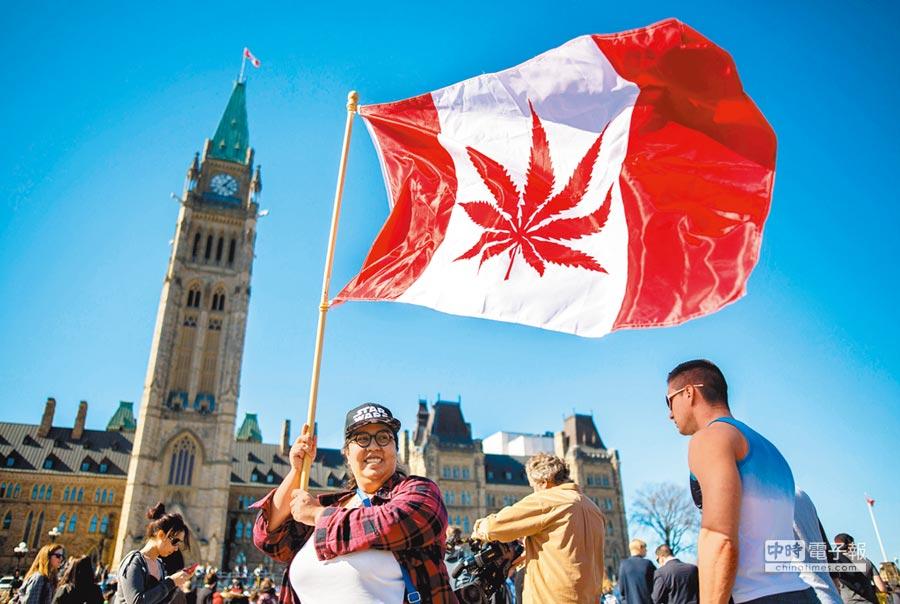 這是2016年4月間,一名女子在渥太華國會大樓前揮舞著一面加拿大國旗,不過國旗中央的楓葉被改成大麻葉。加拿大國會兩院已通過娛樂用大麻合法化,就等總理簽字後生效。(法新社)