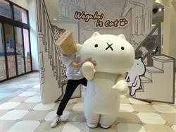 超人氣line貼圖「反應過激的貓」麗寶Outlet Mall辦首展