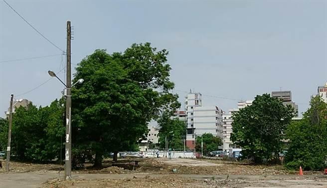 台中市北屯段社宅基地上的樹木,有的原地保留,有的移植到基地景觀區。(圖/台中市府提供)