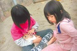 雙兔幼兒園 玩伴很療癒
