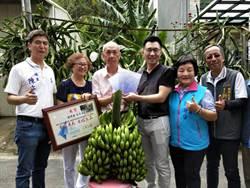 豐原5芎香蕉義賣 所得全捐弱勢團體