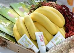 旅行「帶」三奶 詼諧行銷農產加工品