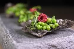 獨家》「超齡才華」主廚接地氣 地瓜葉、米漿躍法菜餐桌