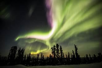 加拿大航空開航周年 美加全線124航點九折