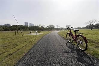 荒地變綠地!新竹左岸變身運動廊帶
