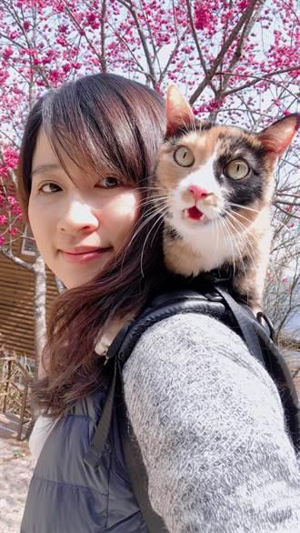 愛貓正妹女警救貓!鑽防火巷救出 5樓墜下小花貓