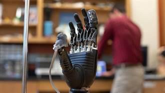 電子皮膚將可使義手變得有感覺