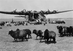 影》運輸機鼻祖:二戰德國「巨人」Me323擁有6引擎