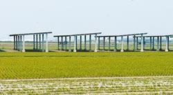 雲林縣率先規範太陽能設施