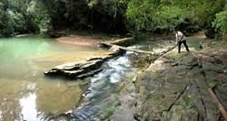 社區居民齊心 澀水「水上平台.侏儸紀」大整修